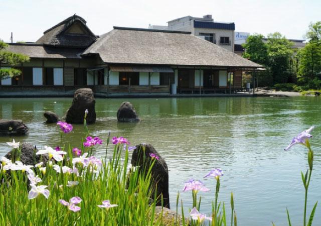 養浩館庭園(福井市)